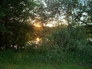 Sonnenuntergang am Hegratriedsee